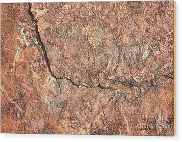 Nature Abstract - Cracked Wood Print by Carol Groenen