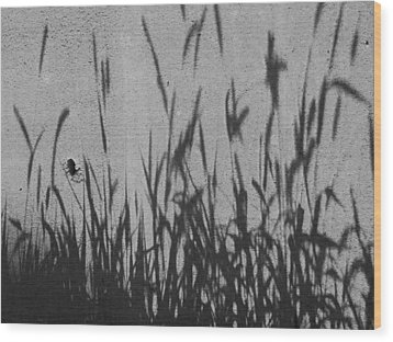Nature As Shadow Wood Print by Lenore Senior