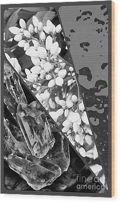 Nature Collage In Black And White Wood Print