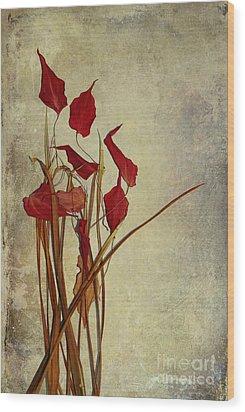 Nature Morte Du Moment Wood Print by Aimelle