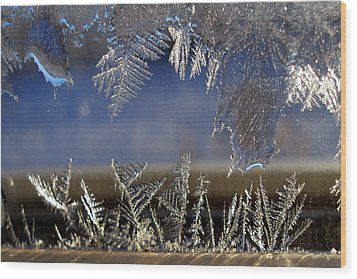 Nature' S Art Work Wood Print by Irma BACKELANT GALLERIES