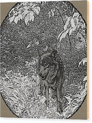 Nature Walk Wolf Wood Print by Debra     Vatalaro