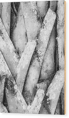 Wood Print featuring the photograph Natures Abstract Black And White by Julie Palencia