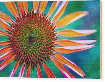 Natures Anti Depressant Wood Print