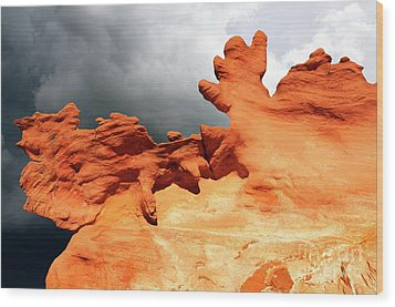 Wood Print featuring the photograph Nature's Artistry Nevada 2 by Bob Christopher
