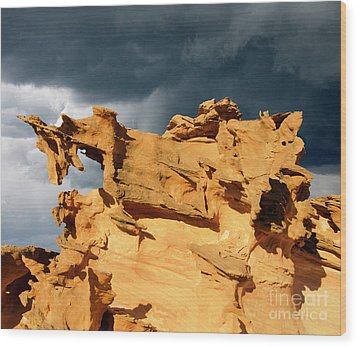 Wood Print featuring the photograph Nature's Artistry Nevada 3 by Bob Christopher