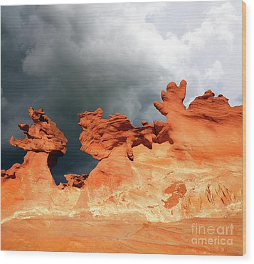 Wood Print featuring the photograph Nature's Artistry Nevada by Bob Christopher