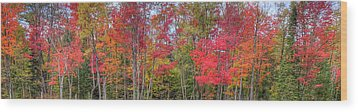 Wood Print featuring the photograph Natures Autumn Palette by David Patterson