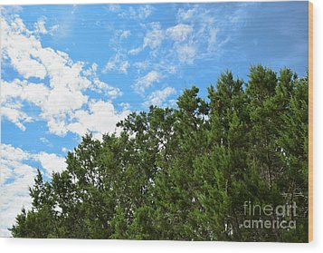 Wood Print featuring the photograph Nature's Beauty - Central Texas by Ray Shrewsberry