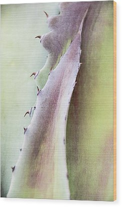 Wood Print featuring the photograph Nature's Desert Abstract One by Julie Palencia