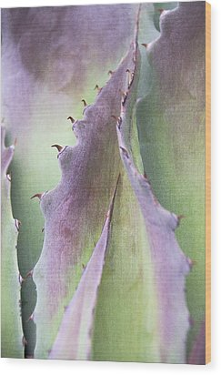 Wood Print featuring the photograph Nature's Desert Abstract Two by Julie Palencia