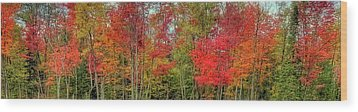 Wood Print featuring the photograph Natures Fall Palette by David Patterson