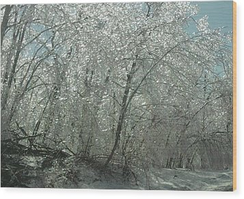 Wood Print featuring the photograph Nature's Frosting by Ellen Levinson