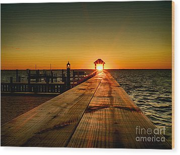 Wood Print featuring the photograph Nature's Lantern by Mark Miller