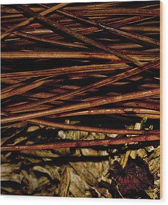 Nature's Lattice Wood Print by Gina O'Brien