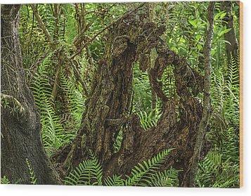 Nature's Sculpture Wood Print