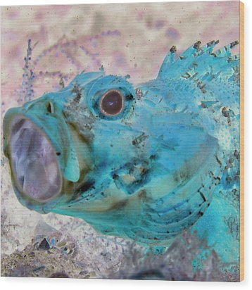 Wood Print featuring the photograph Nautical Beach And Fish #1 by Debra and Dave Vanderlaan