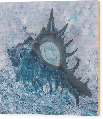 Wood Print featuring the photograph Nautical Beach And Fish #13 by Debra and Dave Vanderlaan