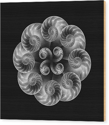 Wood Print featuring the photograph Nautilus Abstract Art by Tom Mc Nemar