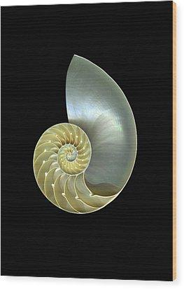 Nautilus Nr.1 Wood Print by Christian Slanec