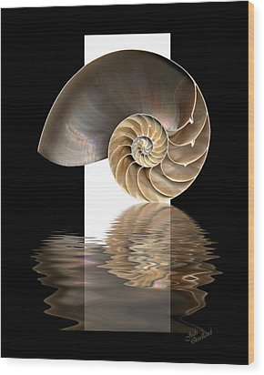 Nautilus Shell Wood Print by Judi Quelland
