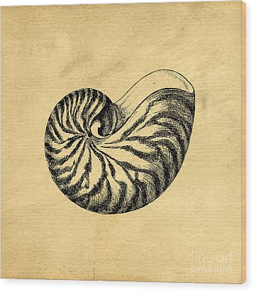 Wood Print featuring the digital art Nautilus Shell Vintage by Edward Fielding
