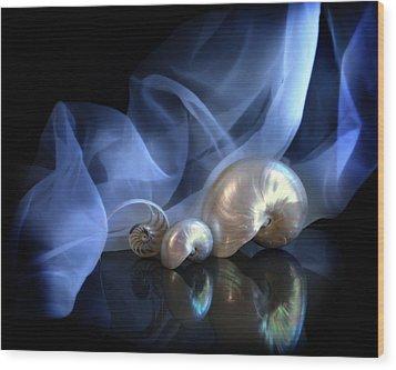 Nautilus Trio Wood Print by Linda Olsen
