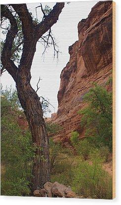 Near Moab 2 Wood Print by Marty Koch