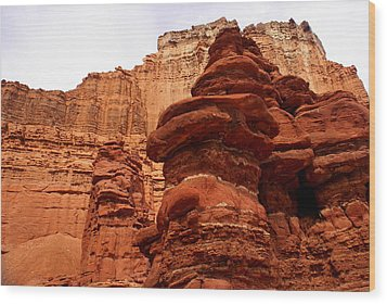 Near Moab 3 Wood Print by Marty Koch