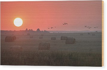 Wood Print featuring the photograph Nebraska Mornings.. by Al Swasey