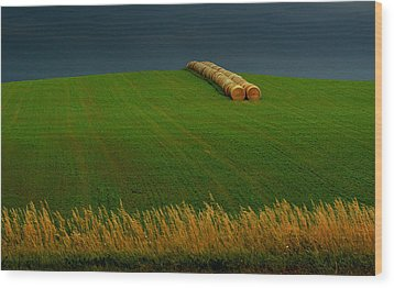 Wood Print featuring the photograph Nebraska Rainy Day by Al Swasey