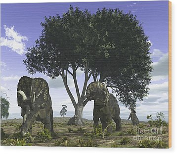 Nedoceratops Graze Beneath A Giant Oak Wood Print by Walter Myers