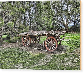 Need Horsepower Wood Print by Douglas Barnard