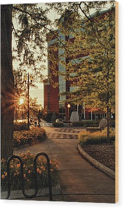 Wood Print featuring the photograph Neenah Center Sunset by Joel Witmeyer