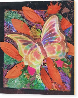 Neon Lights Butterfly On Boxed Canvas Wood Print by Anne-Elizabeth Whiteway
