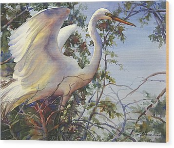Nesting Egret Wood Print by Sue Zimmermann