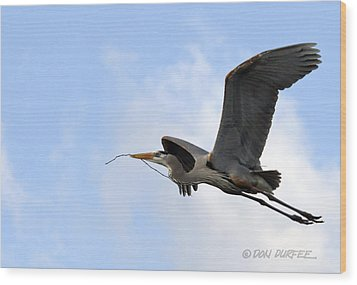 Wood Print featuring the photograph Nesting Material by Don Durfee