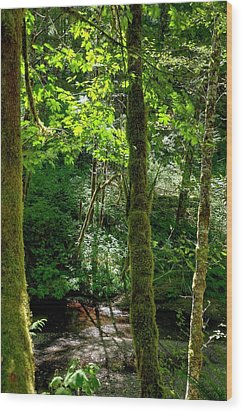 Nestucca River 3039 12x18 Wood Print by Jerry Sodorff