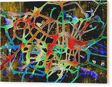 Neuron2 Wood Print by Mordecai Colodner