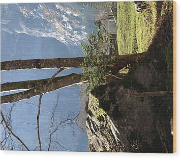 Neutral Wood Print by Randall Slinkard