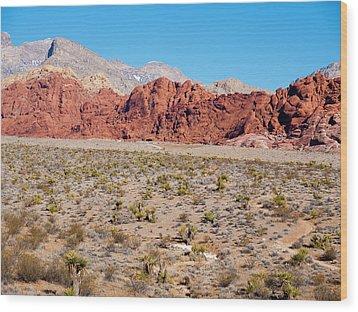Nevada's Red Rocks Wood Print by Rae Tucker