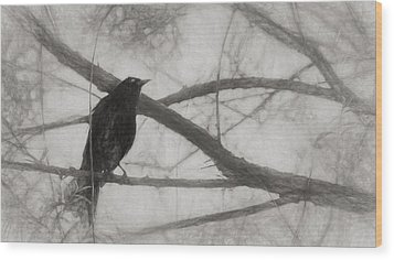 Nevermore Wood Print by Melinda Wolverson