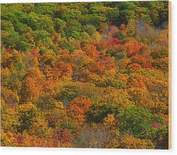 New England Fall Foliage Peak  Wood Print by Juergen Roth