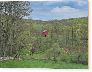 Wood Print featuring the photograph New England Spring Pasture by Bill Wakeley