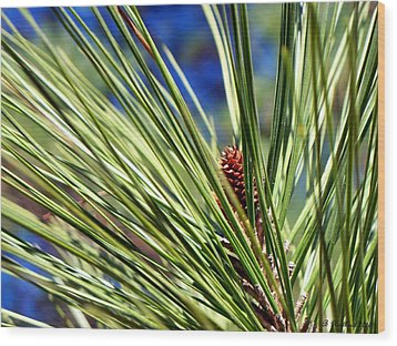 Wood Print featuring the photograph New Life by Betty Northcutt