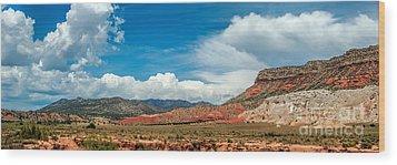 New Mexico Wood Print by Gina Savage