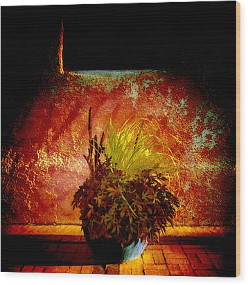 New Mexico Night Wood Print by Ann Powell