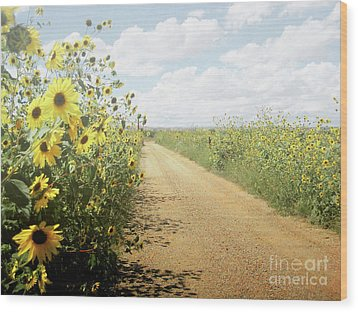 Wood Print featuring the photograph New Mexico Sunflower Road by Andrea Hazel Ihlefeld