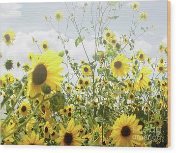 Wood Print featuring the photograph New Mexico Sunflowers by Andrea Hazel Ihlefeld