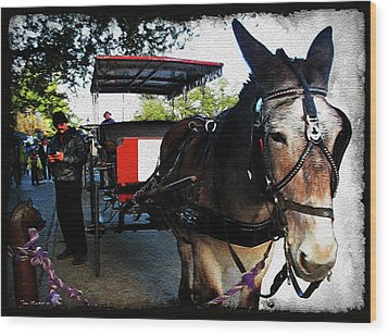New Orleans Carriage Ride Wood Print by Joan  Minchak
